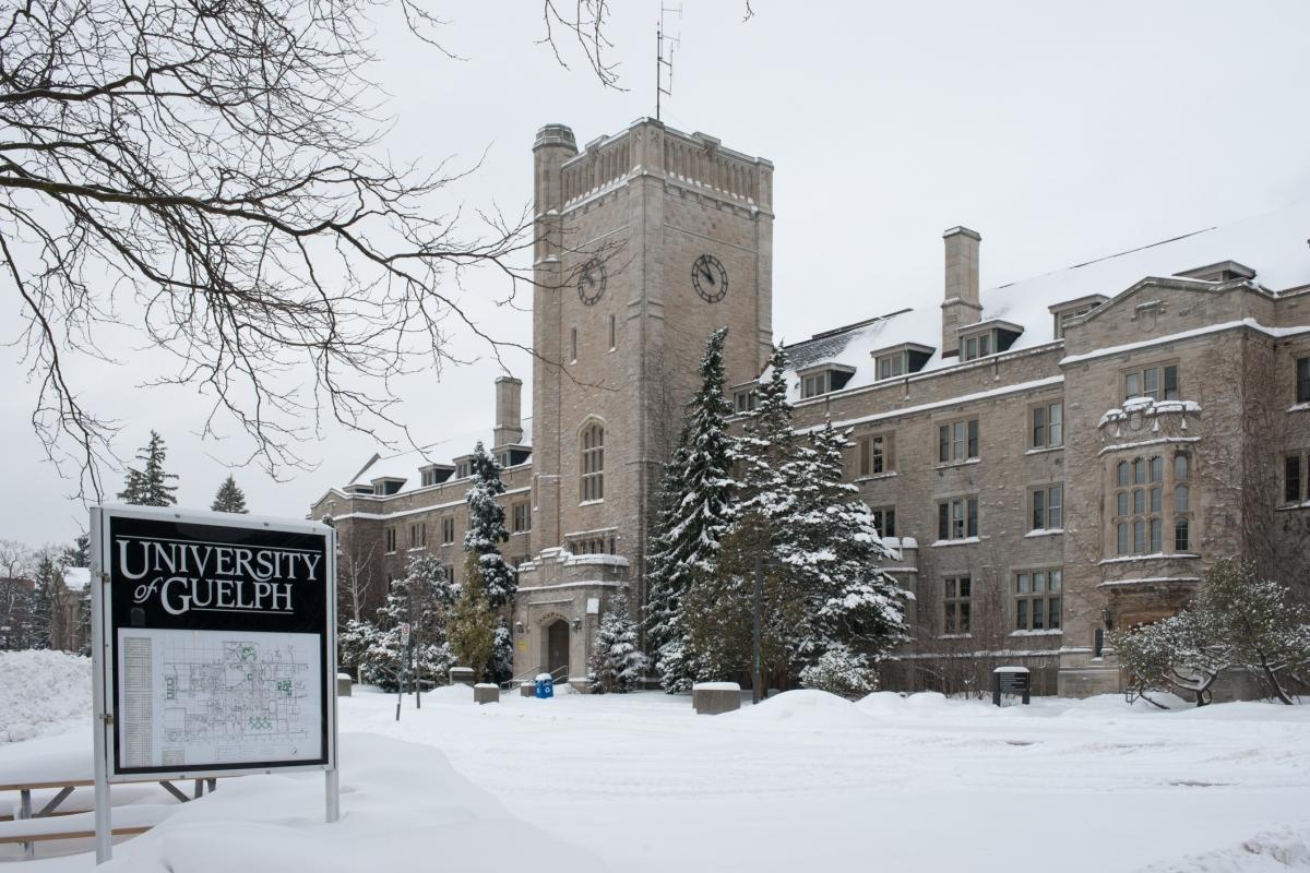 University Of Guelph: Longer Fall Study Break Proposed For University Of Guelph